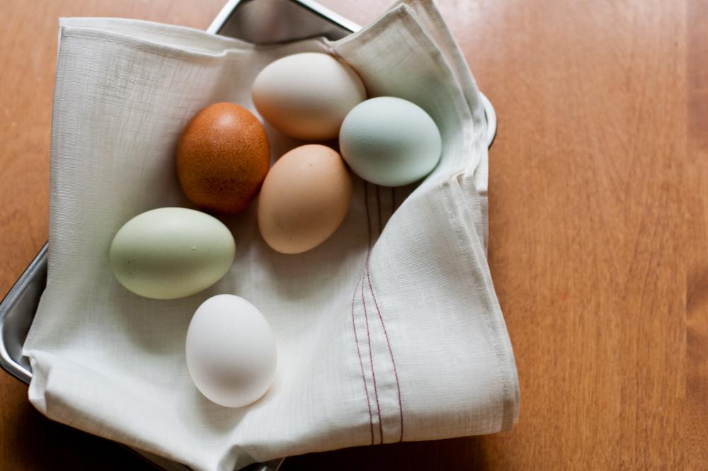 eggs0344